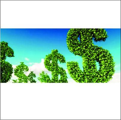 Projetos sustentáveis no Brasil devem atrair até R$ 3,6 tri nos próximos 20 anos