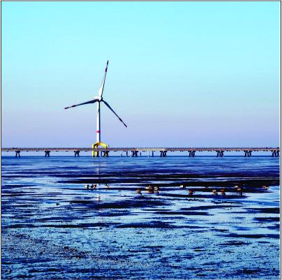 Aeris quer entrar no mercado offshore em até 4 anos